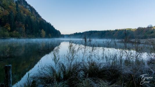 lac petit maclu - lac jura