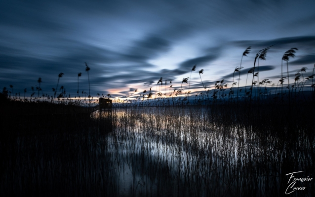 lac léman photo