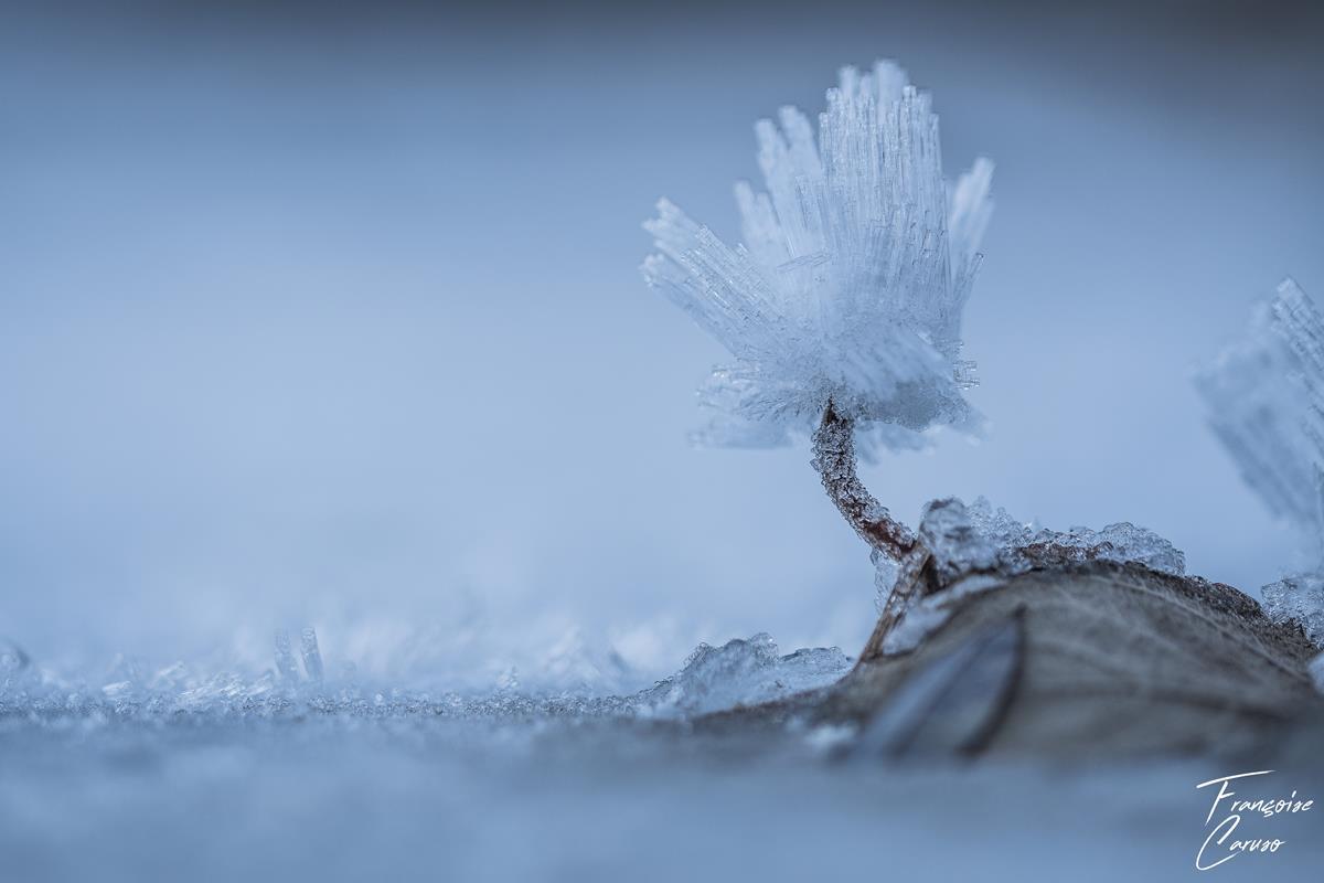 Photo de glace